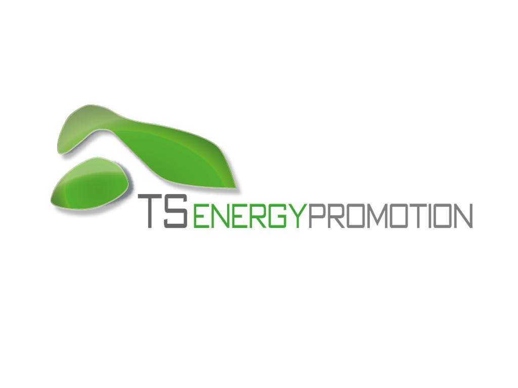 TS Energy Logo